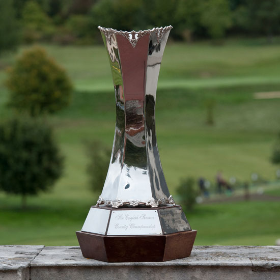 Senior County Finals trophy