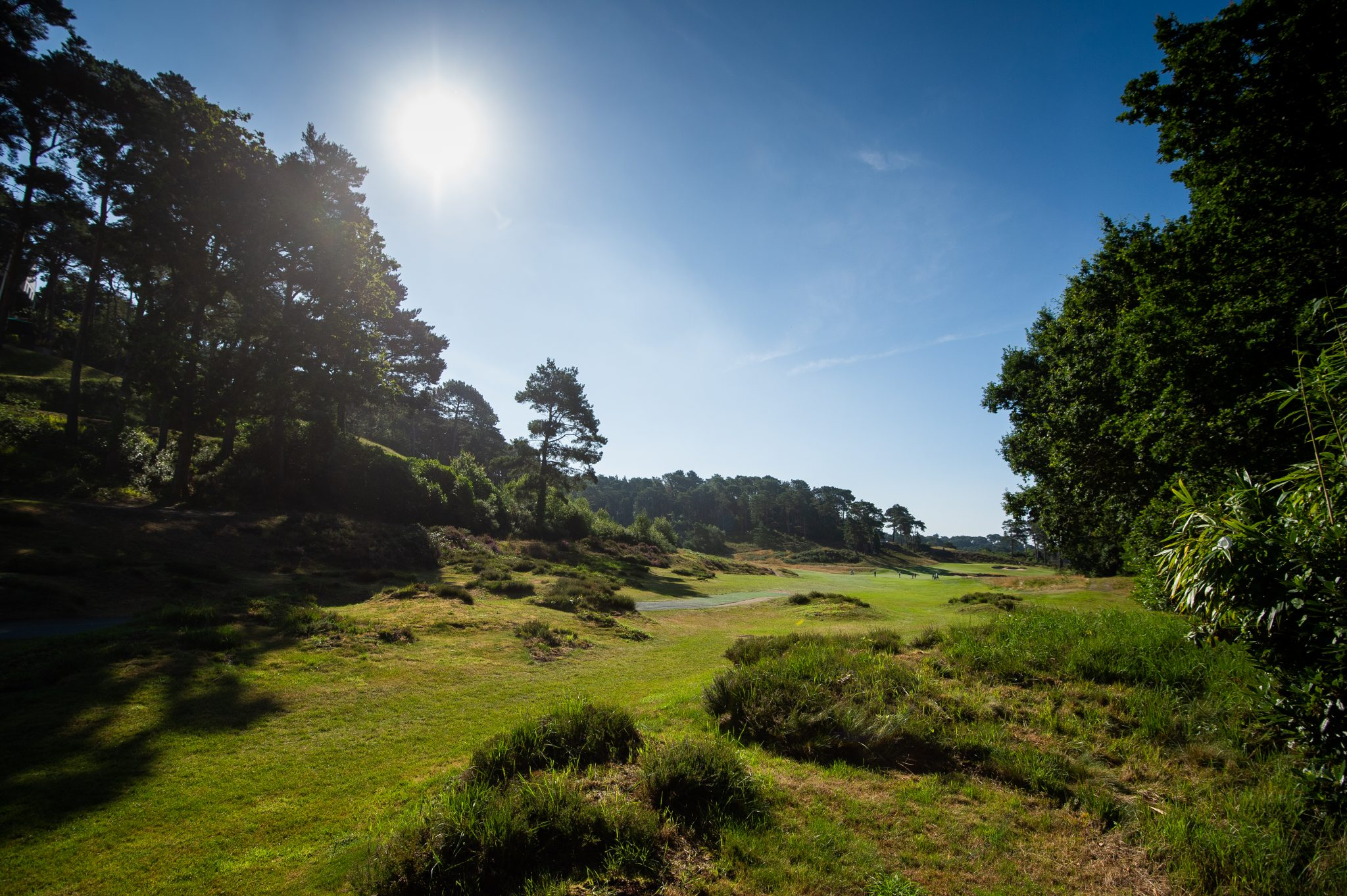 CEO's letter to golfers: 'Challenging hard for all the right reasons.'